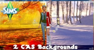 cas_herbst-winter400banner